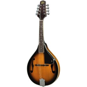 Best Rogue RM Mandolins For The Money