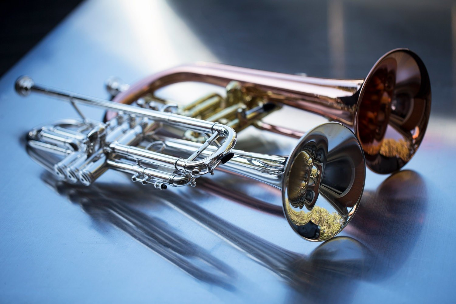 best professional trumpets for the money
