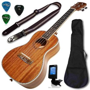 Highest Rated Ukulele Under $100