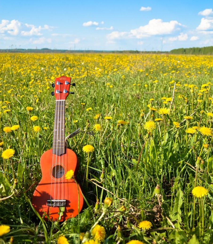The 5 Best Ukuleles Under $100