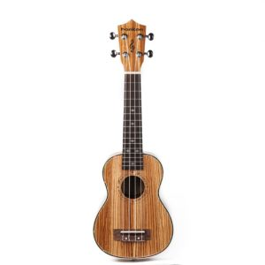 The Best Ukulele Under $100