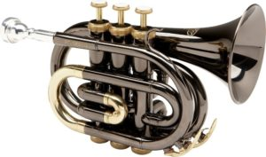 best allora pocket trumpet for the money