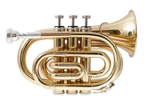 5 best pocket trumpets for the money