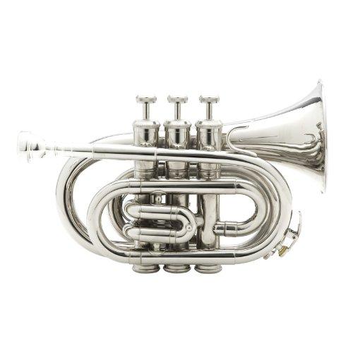 best mendini pocket trumpet for the money