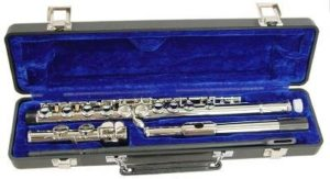 Best Hisonic Flutes For Beginners