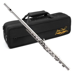 Best Jean Paul Flutes For Beginners
