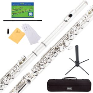Best Mendini Flutes For Beginners
