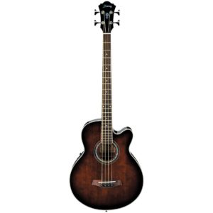 best Ibanez Acoustic-Electric Bass under 500