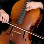 The 5 Best Cellos For Beginners