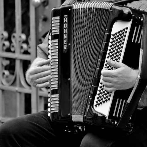 The 5 Best Accordions For Beginners