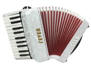 Best Fever Piano Accordions For Beginners
