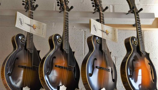 The 5 Best Mandolins For The Money