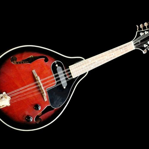 The 5 Best Clip On Tuners For Mandolin