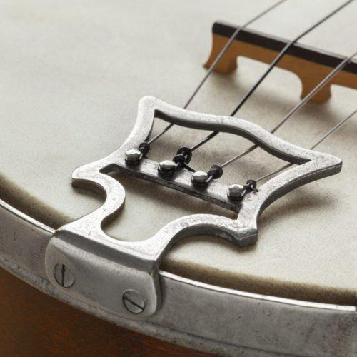 The 5 Best Banjo Bridges For Bluegrass