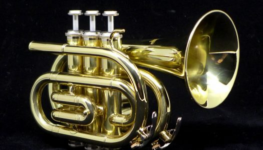 Top 5 Best Pocket Trumpets for The Money