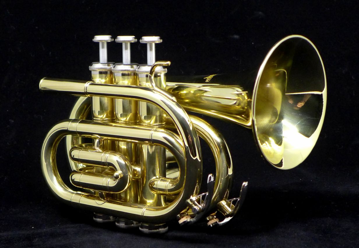 best pocket trumpets for the money