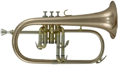 best roy benson flugelhorn for the money