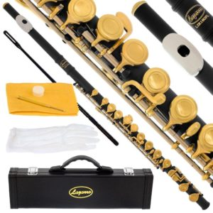 best lazarro beginner flutes for students