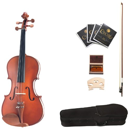 Best Cecilio Violas For Intermediate Players