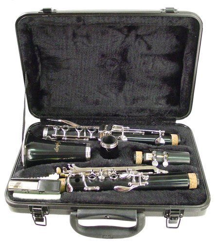 Best Hisonic Signature Series 2610 Bb Orchestra clarinet for students
