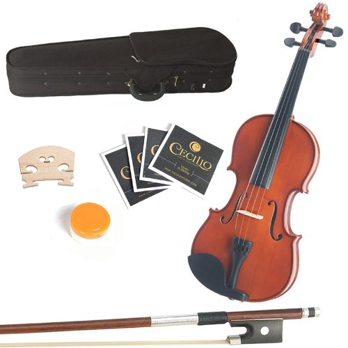 Best Mendini Violas For Intermediate Players