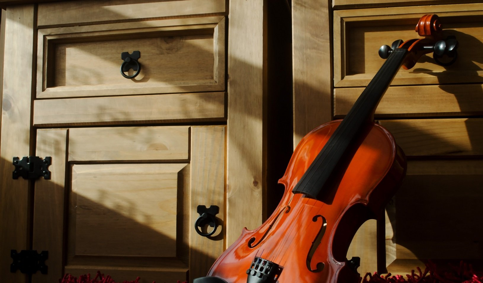 The 5 Best Violas For Intermediate Players