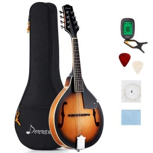 Best Donner mandolin under $1000