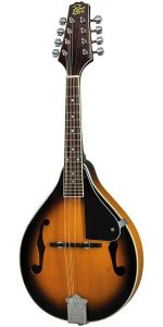 Best Rogue mandolin under $1000