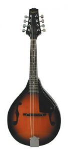 Best Savannah mandolin under $1000