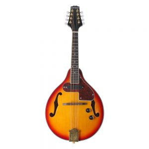 Best ammoon mandolin under $1000