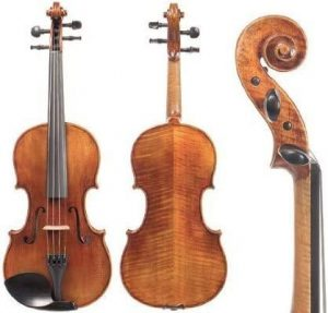 best snow violin for professionals